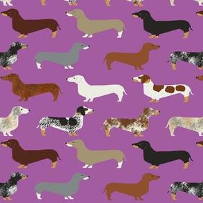 doxie // dachshunds purple dogs pet dog dog fabric cute wiener dog sausage dog fabrics