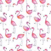 Rflamingos_1-01_shop_thumb