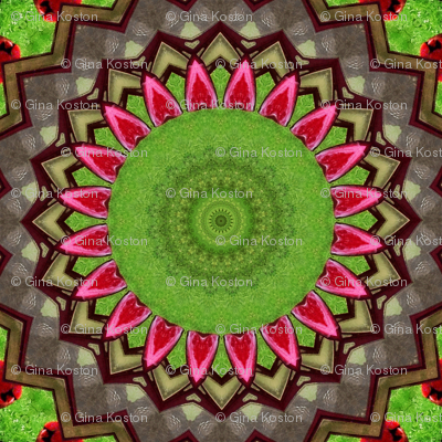 Springtime at the Birdfeeder_Kaleidoscope Version 1