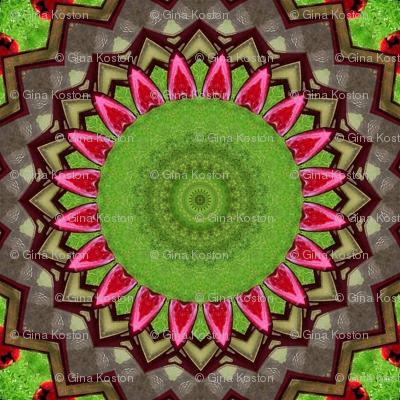 Springtime at the Birdfeeder_Kaleidoscope Version 1