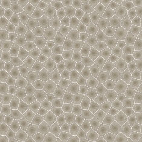 petoskey stone - natural, small fabric by weavingmajor on Spoonflower - custom fabric