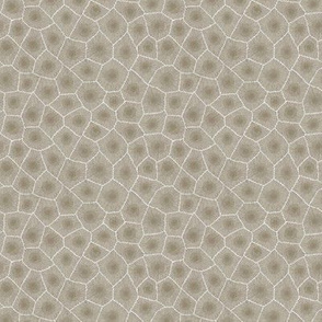 petoskey stone - natural, small