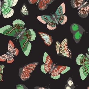 butterfly_study_dark