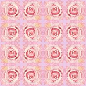 Roses Valentine Love
