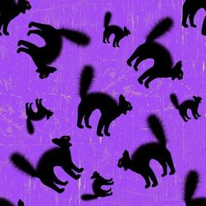 Scared Black Cat Purple Halloween