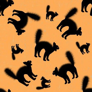 Scared Black Cat Orange Halloween