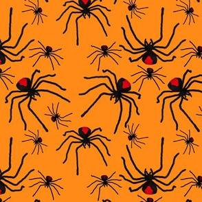 Redback Spider Poison Soup in Orange