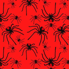 Redback Spider Poison Soup in Red