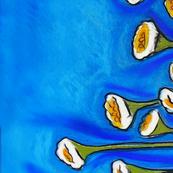 GeorgieSharp - Outback Daisies