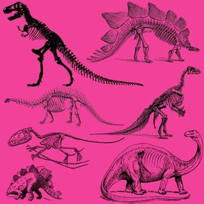 Vintage Museum Skeletons | Dinosaurs on Rose Pink