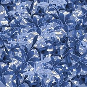 Gilded Lily Iris Blue