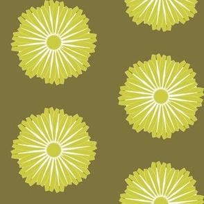 Waterflower_lettuce_avocado