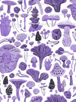 Mushroom bounty in purple