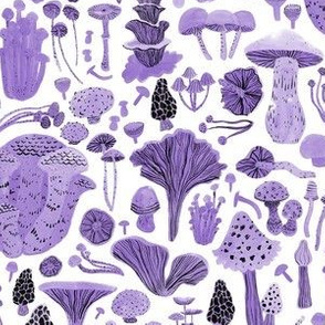Mushroom bounty in purple