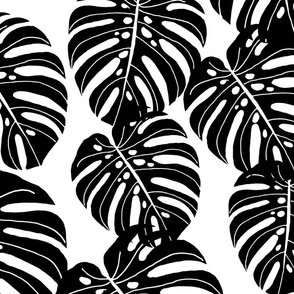 monstera // extra large monstera tropical leaves