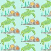 Painted Sea Turtle