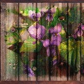 Rviolets_on_wood_original_fat_3150_lc_20_10_shop_thumb