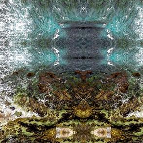 Tidal_Pool_II_c20