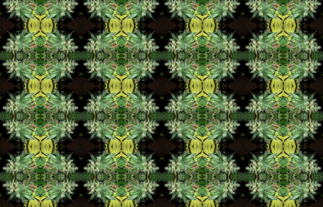 Critical Mass fabric by citivacreationz on Spoonflower - custom fabric
