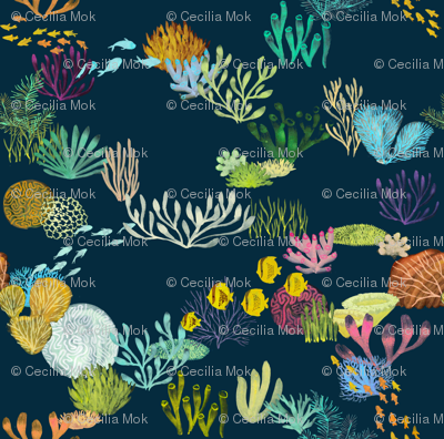 Life in the Great Barrier Reef