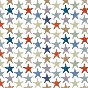 Starfish Enterprise (smaller scale)