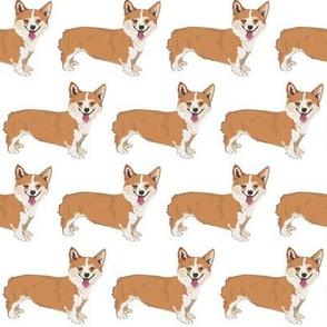 corgi_pattern
