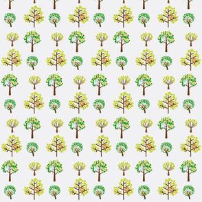 birds in trees
