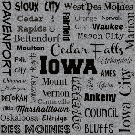 Cities of Iowa, gray fabric by svester on Spoonflower - custom fabric