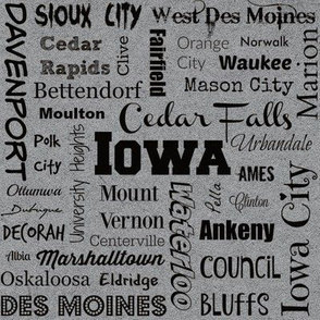 Cities of Iowa, gray