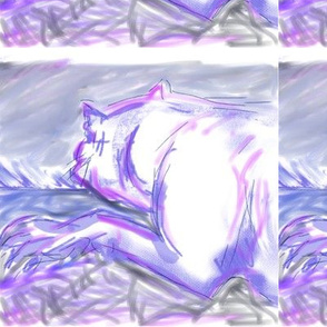 Bulldog at Night