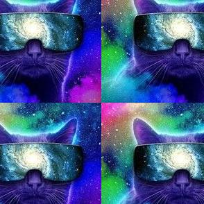 Kitty dimension