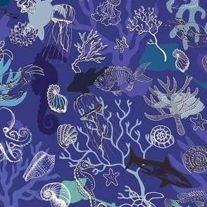 Ocean Colour Scene - Blue