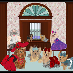 Yorkie -Yorkshire terrier - At the Victorian  Manor - after Church