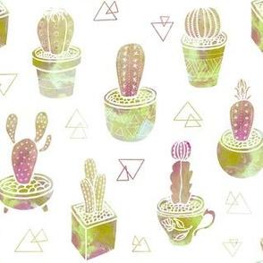 golden  cactus garden
