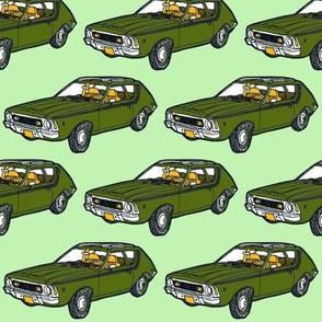 1970 - 1978  AMC Gremlin in green