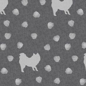 Spitz - Pomeranian grey