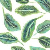 Leaf20_shop_thumb