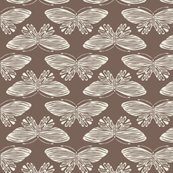 Rrbutterfly-brown_shop_thumb