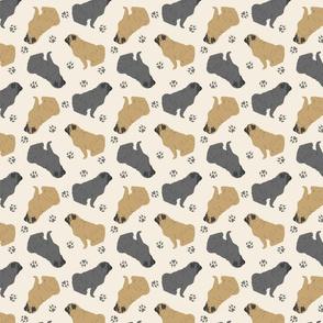 Tiny Pugs - tan