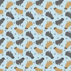 Tiny Pugs - blue