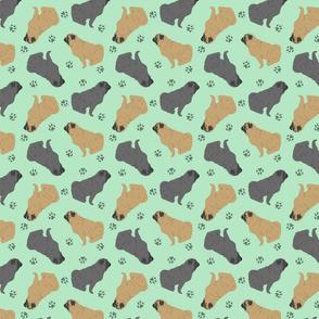 Tiny Pugs - green