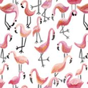 Flamingo1_shop_thumb