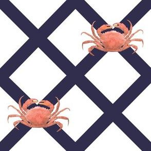 navy_crabs