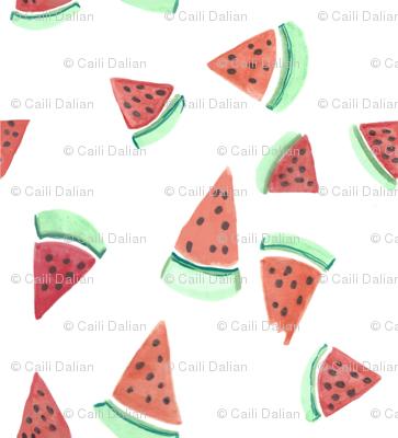 dilly dalian watermelon bites