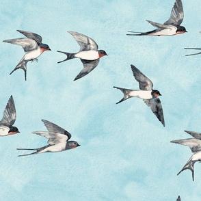 Scattered Blue Sky Swallow Flight - large version