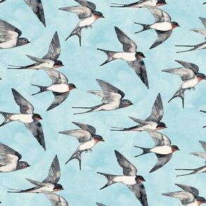 Blue Sky Swallow Flight - small version