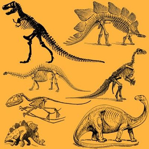 Vintage Museum Skeletons | Dinosaurs on Yellow