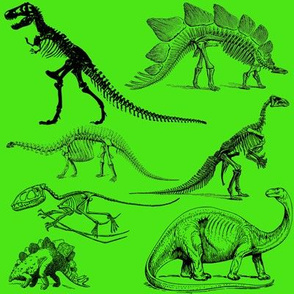Vintage Museum Skeletons | Dinosaurs on Lime Green