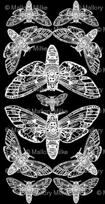 Death Head Moth Tangle Damask