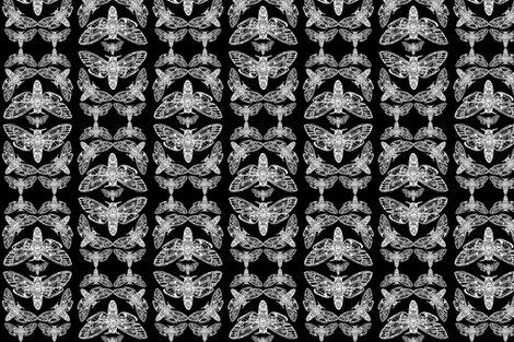 Dh_moth_pattern_shop_preview